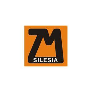 silesia logo 300x300 - Catalogues