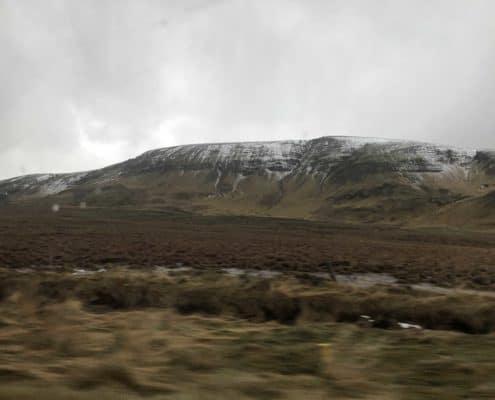 IMG 8571 495x400 - Krajobrazy, gejzery i spotkanie z Ambasadorem, czyli SkandPol w Islandii