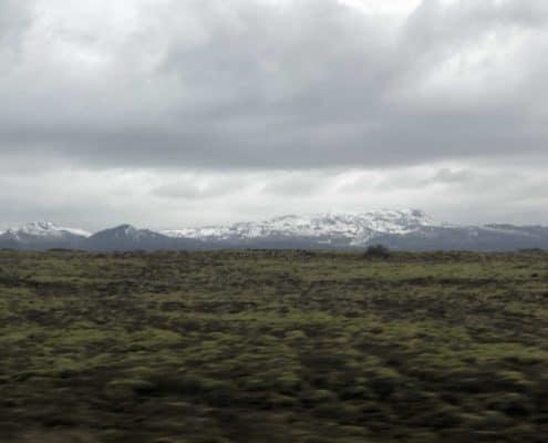 IMG 8664 495x400 - Krajobrazy, gejzery i spotkanie z Ambasadorem, czyli SkandPol w Islandii